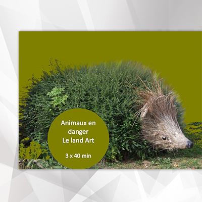 Animaux en danger - Le Land Art